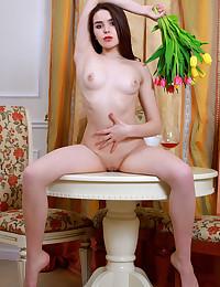 Eva Amari nude in erotic PRESENTING EVA AMARI gallery - MetArt.com