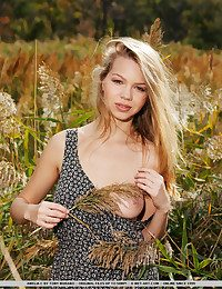 Surrounded by tall grass, Amelia exudes a youthful, tempting at the begin who likes escapade and the rush of spunky and harsh outdoor sex.