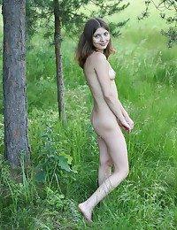 Russian inexperienced model