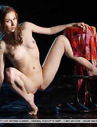 Annett A bare in softcore WELLIZ gallery - MetArt.com