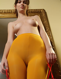Softcore Hotty - Naturally Magnificent Inexperienced Nudes